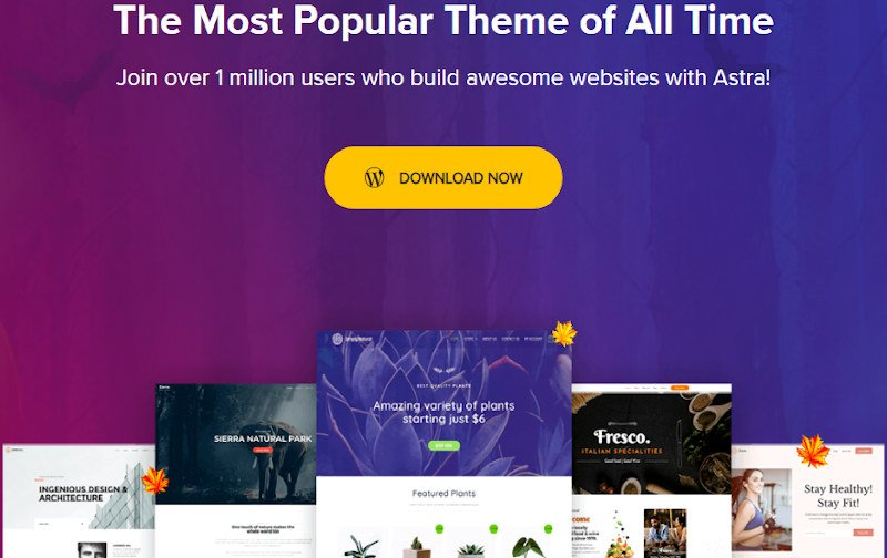 astra is most popular wordpress theme