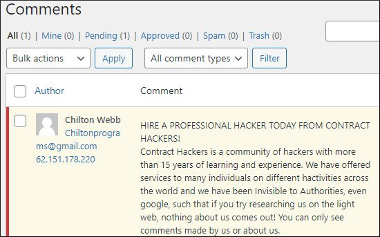 example of spam comment on WordPress